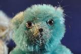 Vier Teddybären in verschiedenen Farben