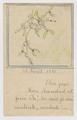 FRAN-PA-101 Lettres de Marguerite à son père