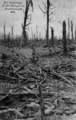 """Postkarte - """"Zur Erinnerung an die Kämpfe im Argonnenwald"""""""