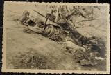 Fotos vom Alltag des Krieges