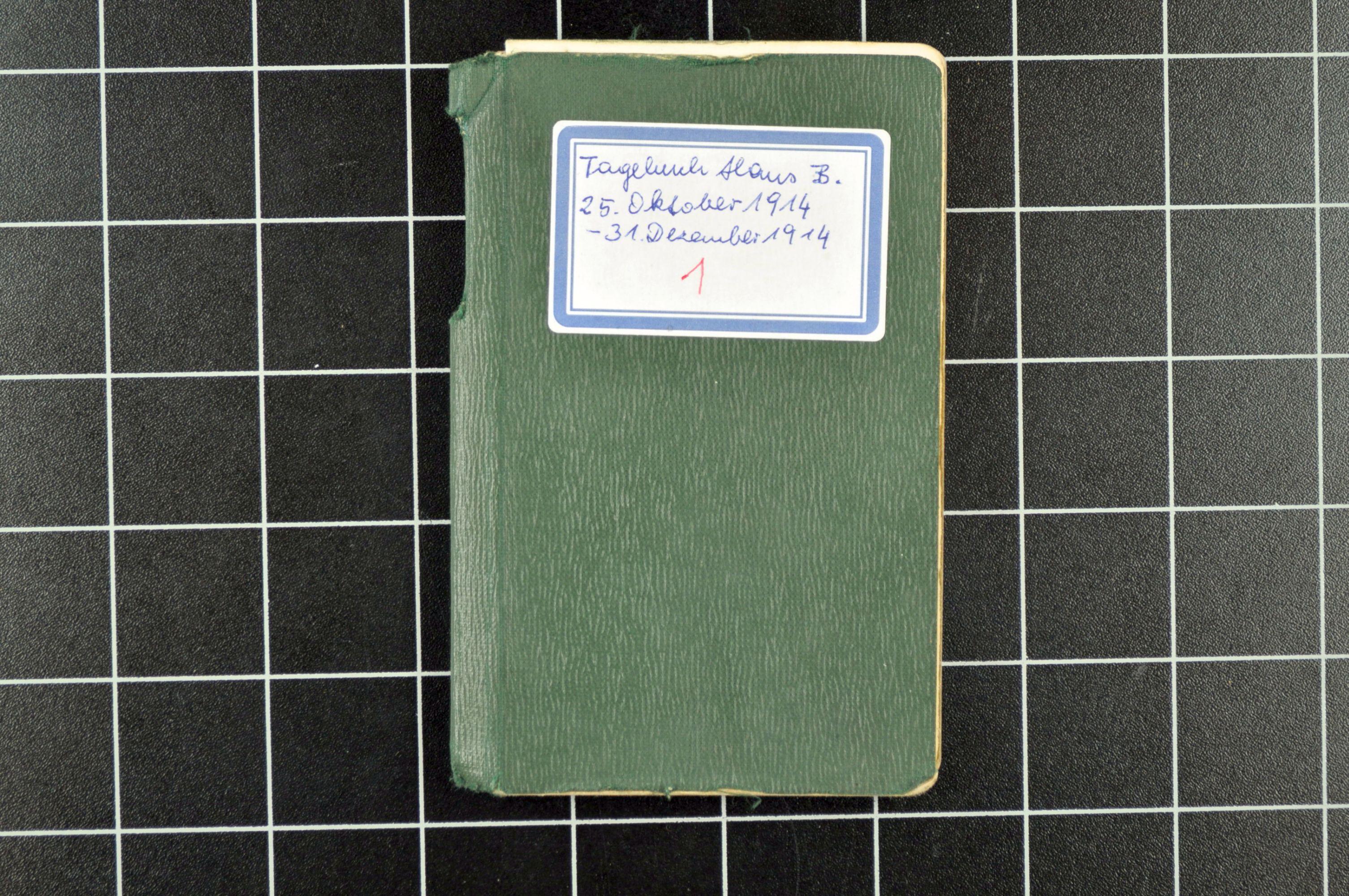 Tagebücher Hans Beck-Mannagetta