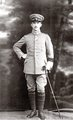 Blutopfer, Tagebücher aus dem Ersten Weltkrieg