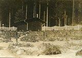 Kriegsgefangenenlager in Norddeutschland / 5) Hameln - der Friedhof