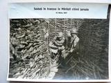 Soldați în tranșeele de la Mărăști (1917)