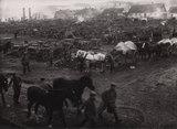 Kriegsbilder für die Oberste Heeresleitung, Ostfront, von Alfred Kühlewindt