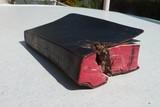Die Bibel als Rettung vor dem Tod