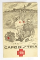 Red Cross Post Card 1916