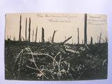 Ansichtskarte eines zerstörten Waldes, Priesterwald (Frankreich)