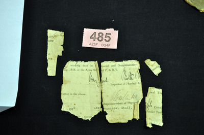 Fragments of physical of Michael O'Rourke (1)