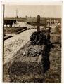 Foto der Grabstätte von Karl Luplow