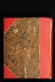 Dagboek van Lina Goubeau-Valcke
